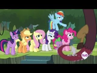 Пони милые пони